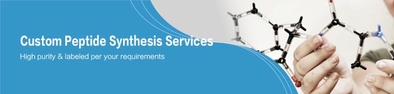 Custom Peptide Synthesis Services