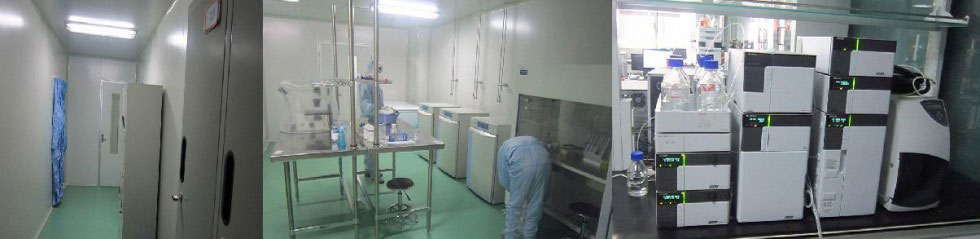 Custom Organic Synthesis Lab
